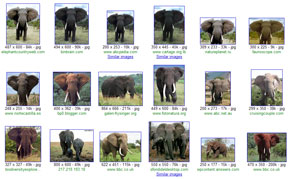 Google similar images: elephants!