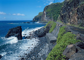 the eighteen strangest roads in the world: #1 is the Hana Highway