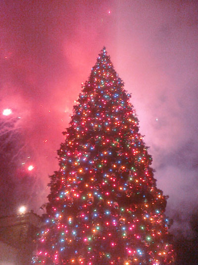 Westlake Village Prominade's tree is lit!
