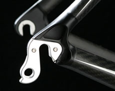 Orca replaceable derailleur hanger