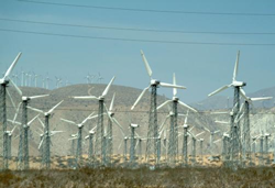 giant wind farm outside of Palm Springs