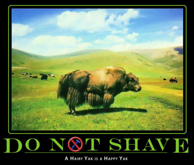 shave ... at your peril