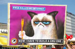 Grumpy Cat wants a GNU Internet