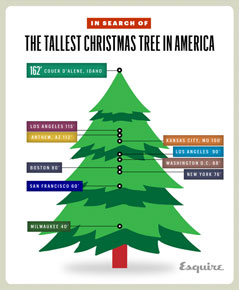 the tallest Christmas tree