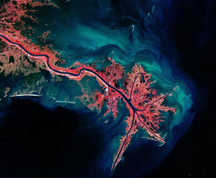 Mississippi river delta seen from space