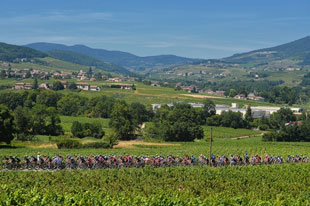 The peleton cruises before the Alps
