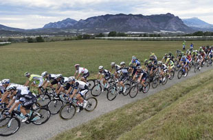 the peloton cruise through Provence on stage 15