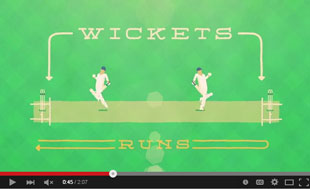 cricket, explained