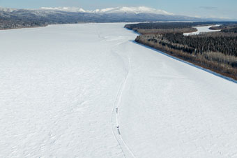 mushing along the Yukon River